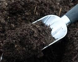 Як приготувати грунт для розсади