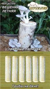 Вибираємо і купуємо міцелій грибів. Не дайте себе обдурити!