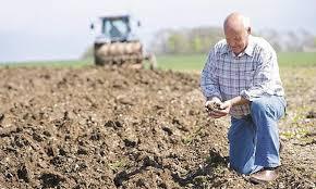 Органічне землеробство в питаннях і відповідях