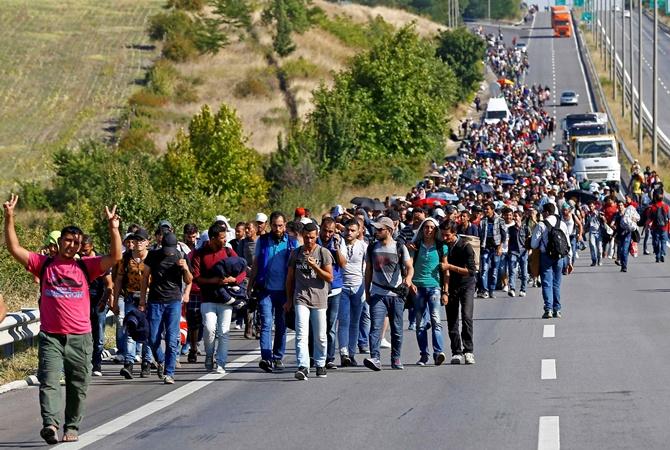 Європейці про мігрантів: «Вони нас змітають»