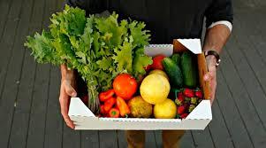 Рецепт популярності служб доставки їжі